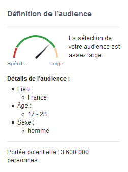 audience potentielle facebook