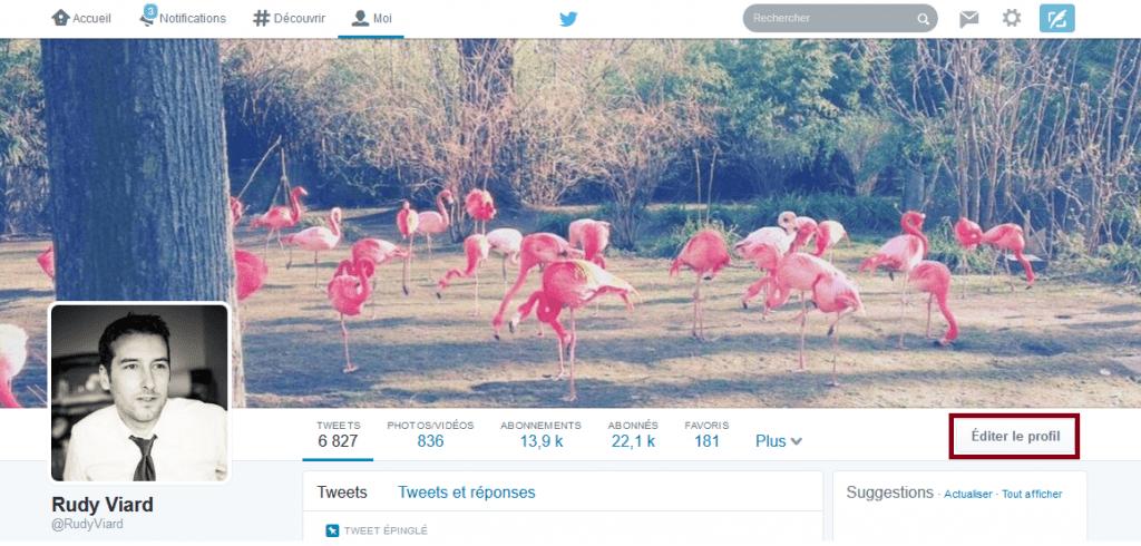 configurer profil twitter