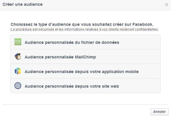 audience personnalisée custom audience facebook