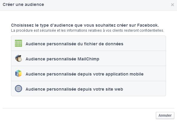 audience personnalisée custom audience facebook