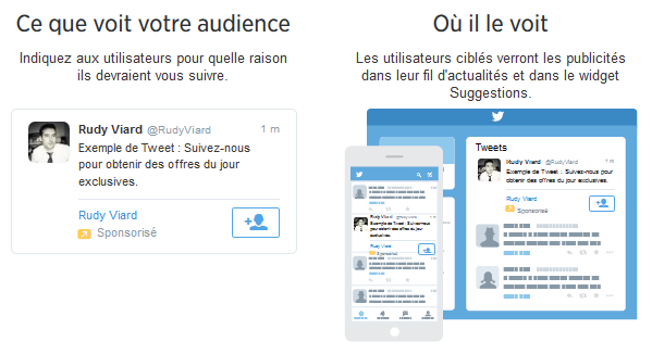 campagne abonnes twitter