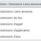 extensions d'annonces google