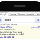 extension appel mobile