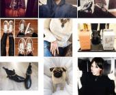 rechercher des photos sur instagram
