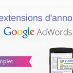 Comment Utiliser les Extensions d'Annonce Google ?