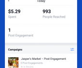 statistiques publicités facebook