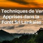 10 Techniques de Vente Apprises au Cœur de la Forêt Sri Lankaise